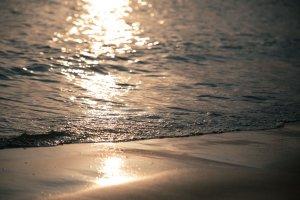 sea dawn sunset beach